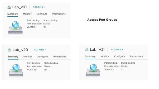 three guest port groups: Lab_v10, Lab_v20 & Lab_v21